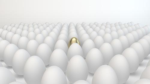 Golden egg amongst white ones, a metaphor for learning SEO